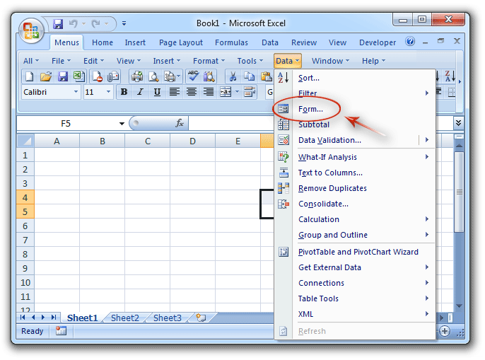 where is data form in microsoft excel 2007  2010  2013