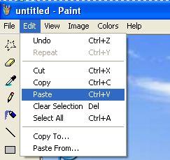 How to Take a Screenshot in Microsoft Windows XP, Vista and