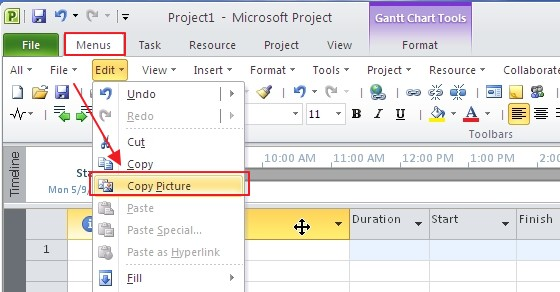 Where is Copy Picture in Microsoft Project 2010, 2013, 2016